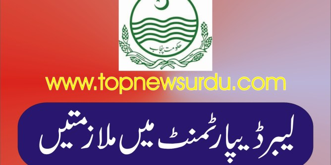 jobs in punjab labour department 2019