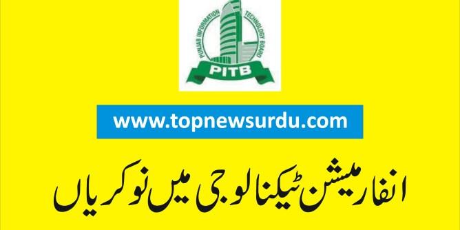 pitb jobs 2019