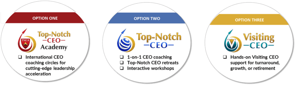 3-options-to-transform-talent-into-wealth