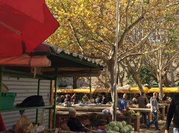 split-farmers-market-2