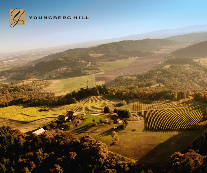 A pretty nice hill in Oregon's Willamette Valley