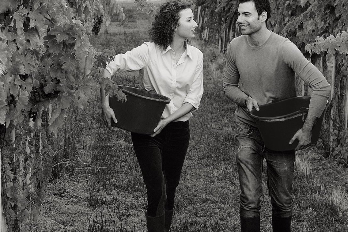 Meet our winemakers: The Vinum