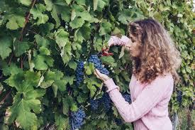 natalia pruning