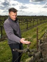 Great Wines of Lodi, Part II: Markus Wine  Co.