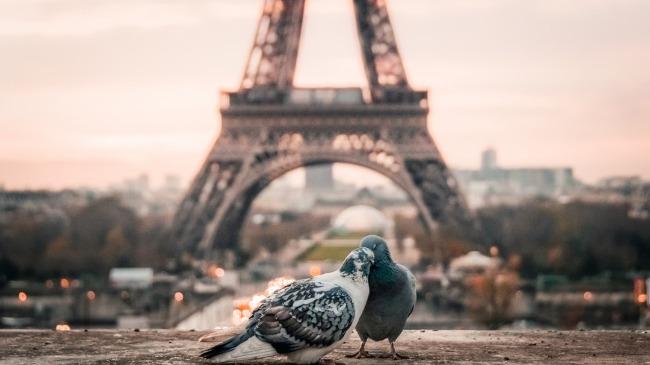 Paris-Eiffle-Hotel-โรงแรม-ที่พัก-ปารีส-ไอเฟล