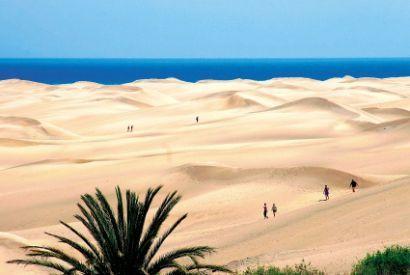 dunas maspalomas- playa del ingles