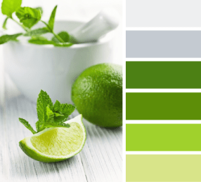 Primary - Green Power Palette