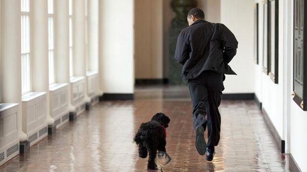 obama-and-dog