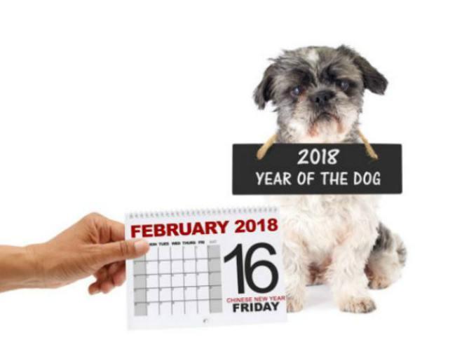 Horóscopo chino: año del perro 2018: ¿qué significa