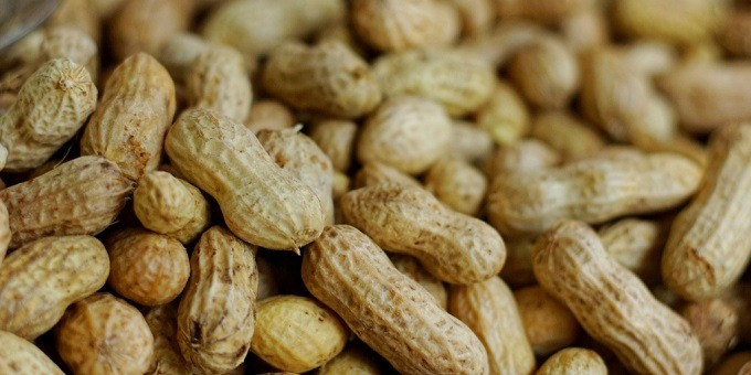 How To Store Boiled Peanuts