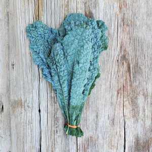 Toppled Barn Farm Dino Kale