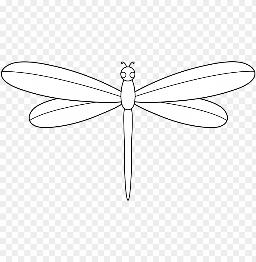 Dragonfly Dragonfly Cartoon White Png Image With Transparent Background Toppng