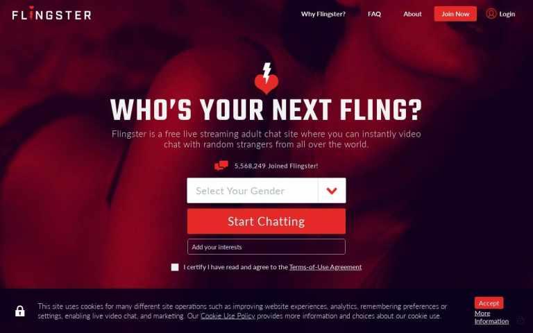 Flingster - top Sex Chat Sites