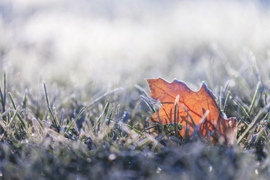 Ведро и хладно, током дана углавном сунчано
