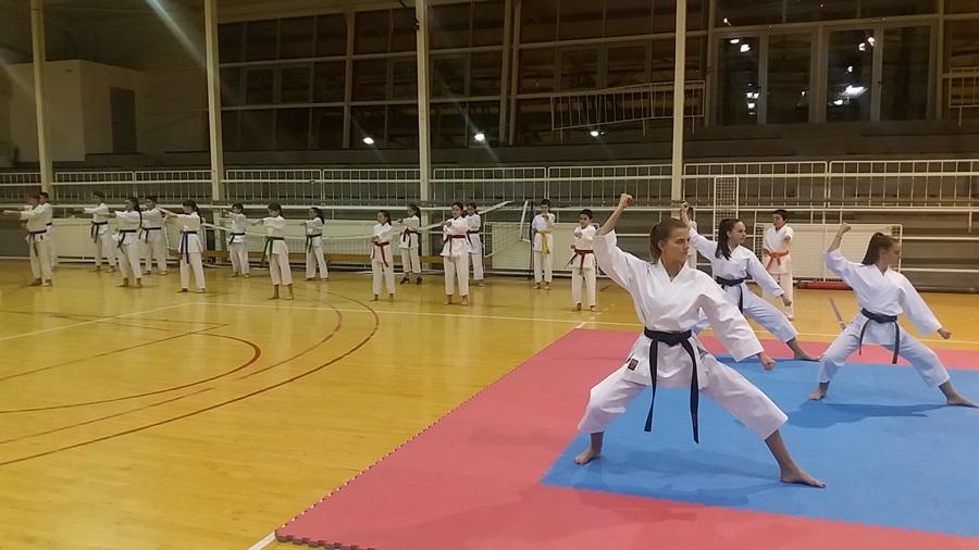 Тренингом до победе: Овако се у Тополи вежба карате