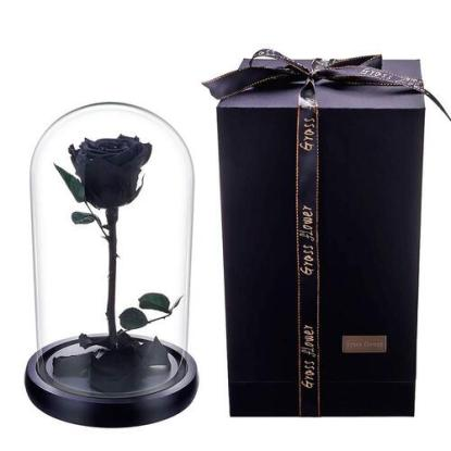 JaneDream Exquisite Preserved Fresh Rose with Wooden Stand, Glass Cover in Gift Box