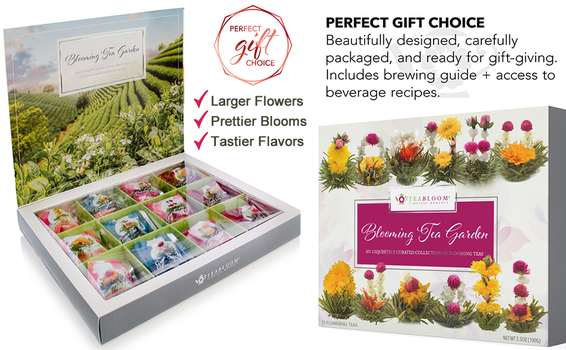 Teabloom Flowering Tea Assortment Collection 12-piece Gift Set