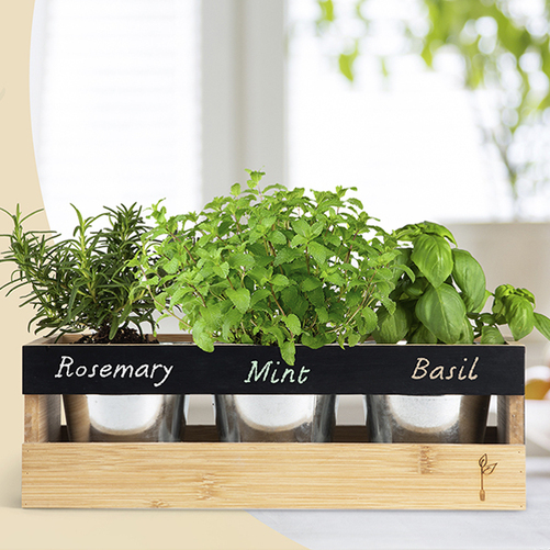 The Garden Fork herb metal pots for indoor plants with wood planter box