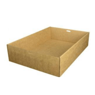 Rectangular Small Catering Tray