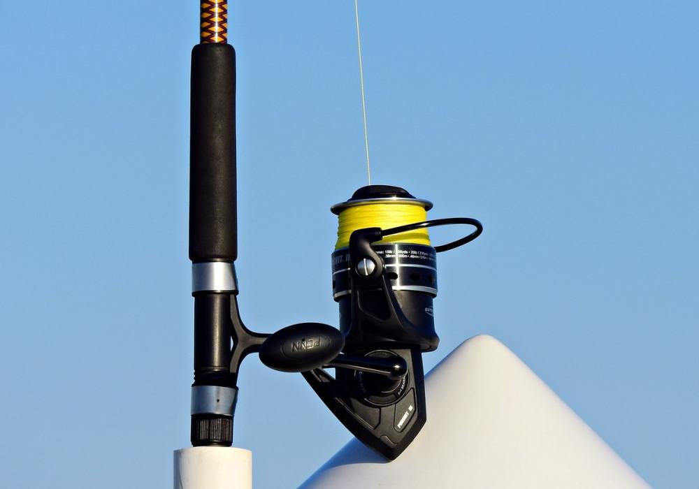 how to select a fishing reel