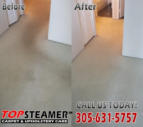 Aventura Fl Carpet Cleaner