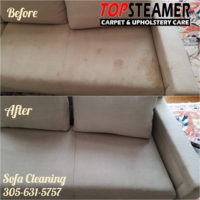 Sofa cleaning company in coconut grove