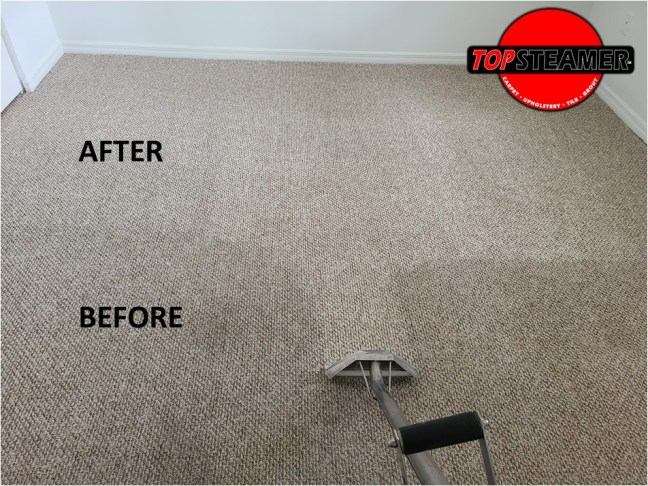 Carpet Cleaning in Homestead