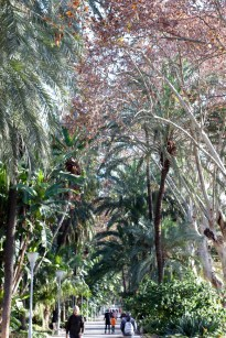 Malaga Parque