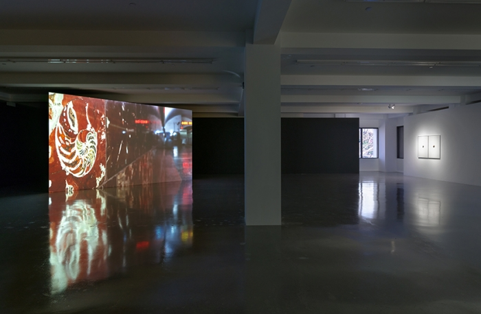 Cyprien Gaillard presents Reefs to Rigs at Sprüth Magers Los Angeles