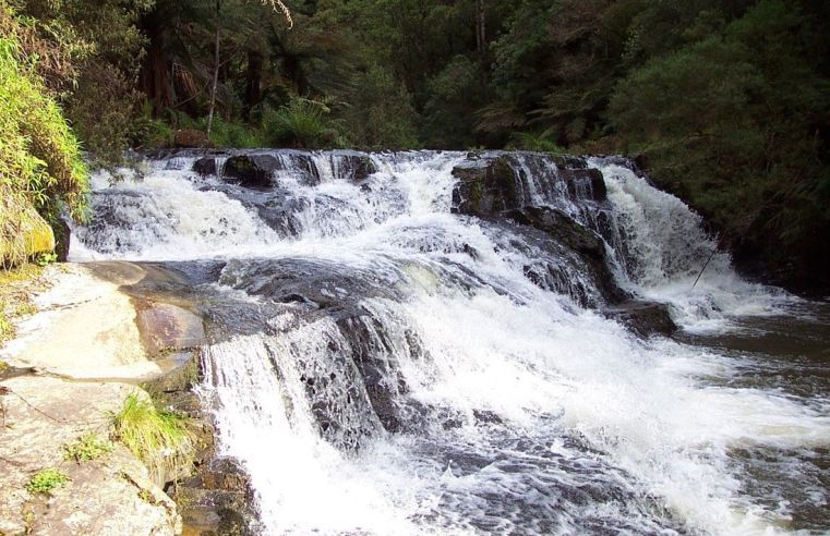 Bucket List: Top 15 Best Things to Do in Traralgon, Australia
