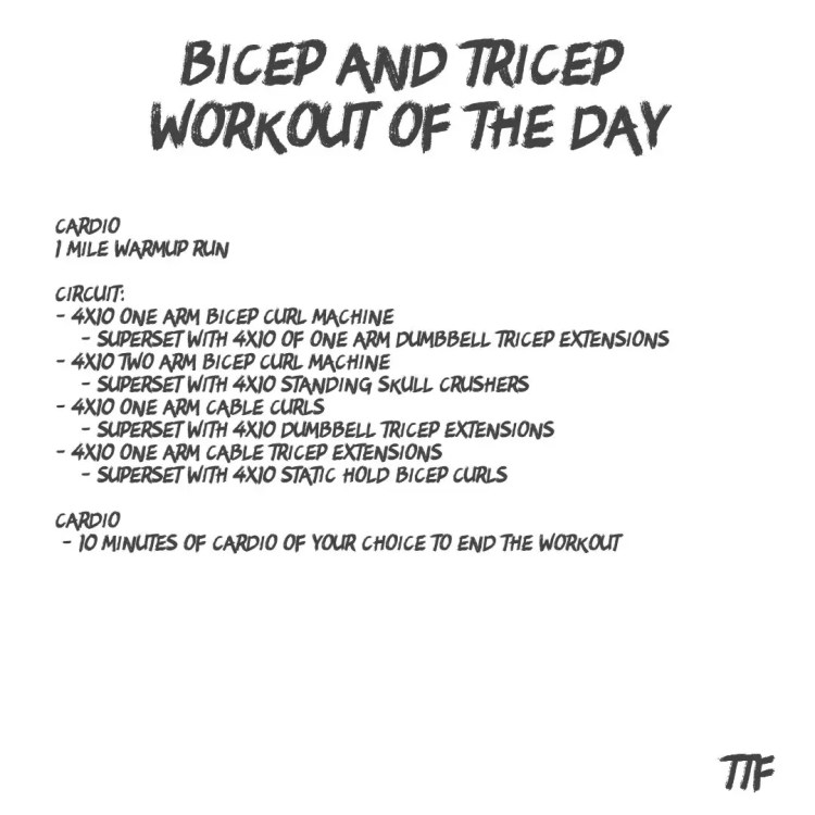 Bicep and Tricep Workout of the Day