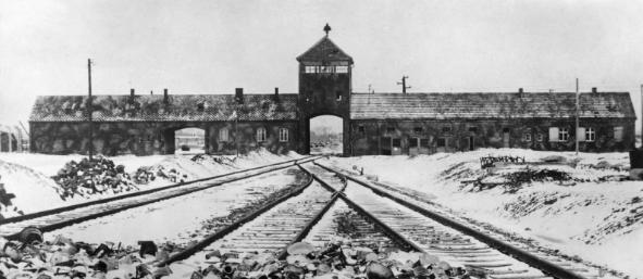 21 фото из концлагеря в Освенциме, от которых мурашки по ...