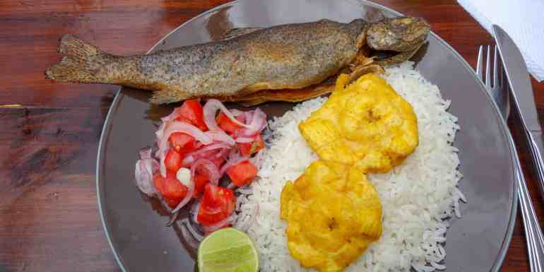 Trucha with Rice and Plantain, typical food in Ecuador