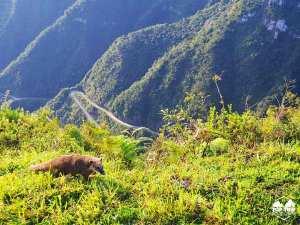 TOP TRIP ADVENTURE | URUBIC I SERRA DO RIO DO RASTRO