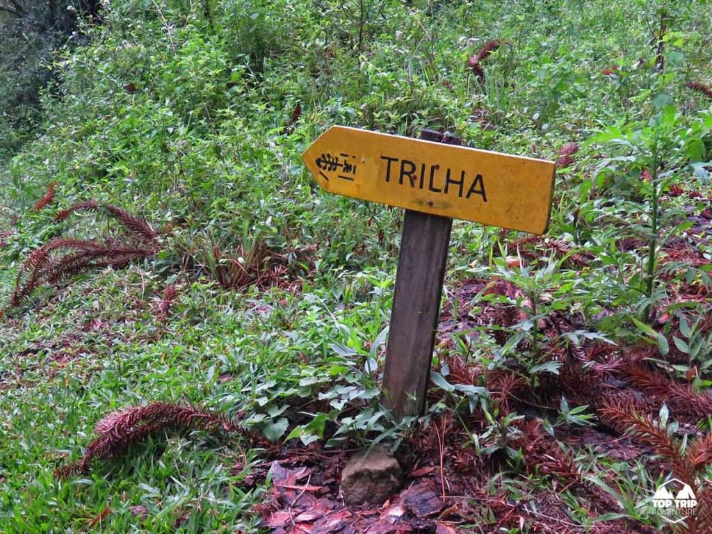 TOP TRIP ADVENTURE   CAMINHO DAS ARAUCARIAS   CANELA