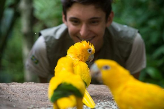 No Parque das Aves dá para chegar pertinho delas