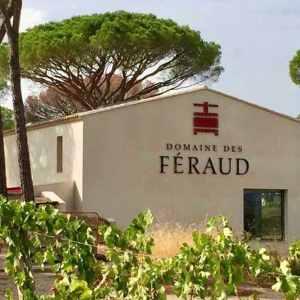 Provence vinsmagning