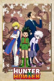Hunter x Hunter 2011 VF