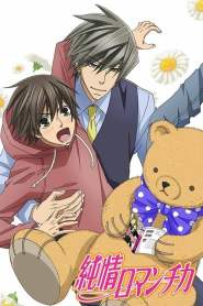 Junjou Romantica Saison 3
