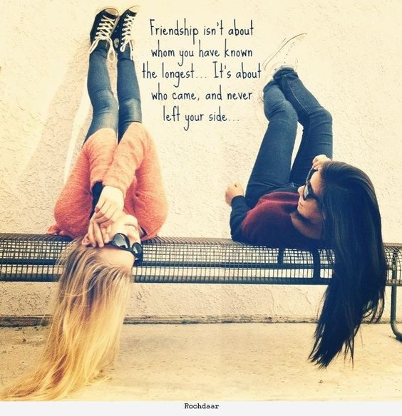 Cute Friendship Quotes