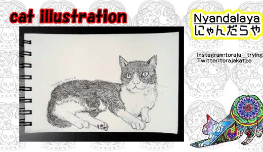 猫のイラストを描く、という動画。2猫目。