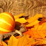 Pumpkins And Autumn Leaves Image Autumn Cover Of Facebook With Pumpkin Images Leaves 35450 Torange Biz Free Pics On Cc By License