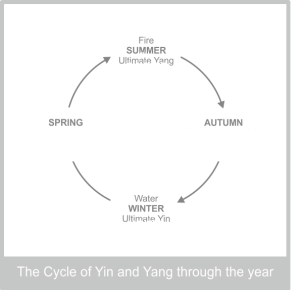 kidneys-the-cycle-of-yin-yang-through-the-year-diagram