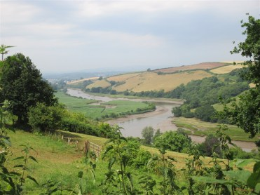 Glorious view from Sharpham back up the Dart towards Totnes