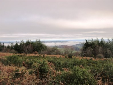 Mist in the Teign Valley