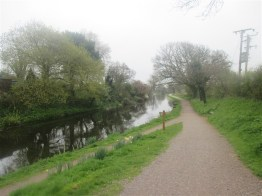 Along the Grand Western Canal path