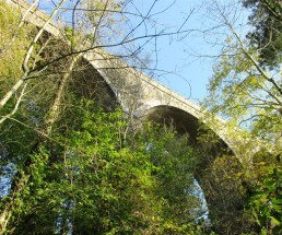 The 'new' arches