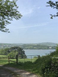 Looking over to Dittisham