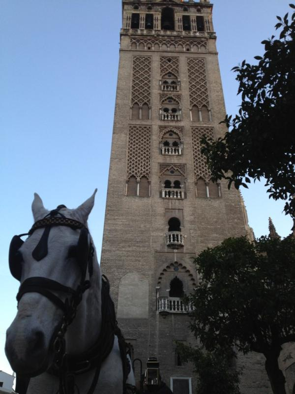 Torbe en Sevilla