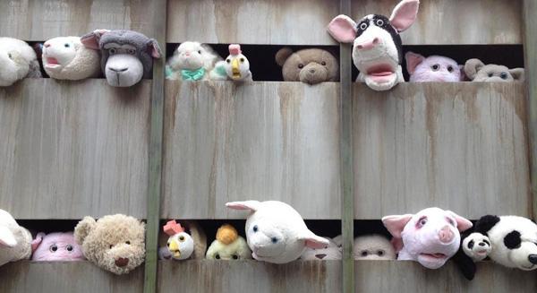 NO compres en tiendas de animales!